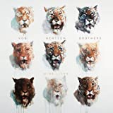 Nine Lives by Von Hertzen Brothers (2013-05-04)