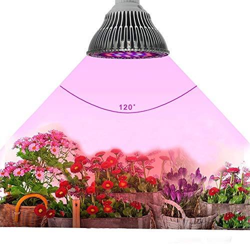 Indoor Vegetable Garden Artificial Light in US - 7