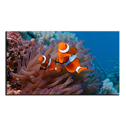 Unframed Modern sea Anemone and Clownfish Print on Canvas Painting for Home Wall Art Decor Living Room Bedroom Decoration(18x32inch)