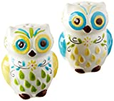 owl kitchen decor Floral Owl Salt & Pepper Shakers,  Hand-painted Ceramic by Boston Warehouse