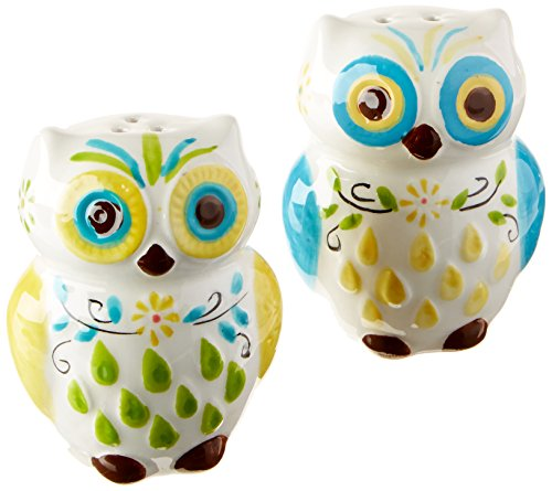 (Floral Owl Salt & Pepper Shakers,  Hand-painted Ceramic by Boston Warehouse)