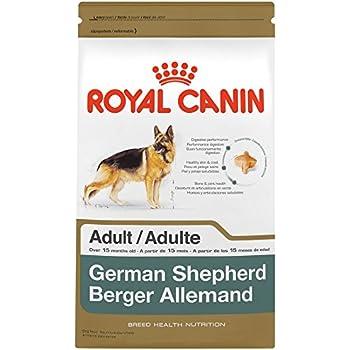 Eukanuba Puppy Food >> Amazon.com: ROYAL CANIN BREED HEALTH NUTRITION German Shepherd Adult dry dog food, 6-Pound: Pet ...