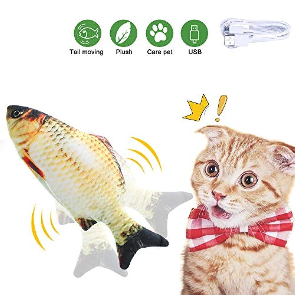 [해외] 고양이 캣닢 물고기 쿠션 6종