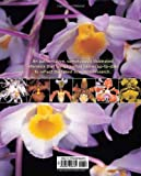 The New Encyclopedia of Orchids: 1500 Species in