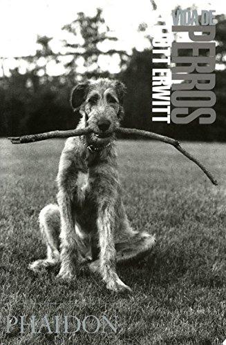 Descargar Libro Vida De Perros Vv.aa.