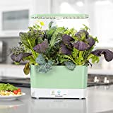 AeroGarden Sage Harvest Indoor Garden