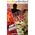 Ryan Kaine: On the Run: Book One in the Ryan Kaine action thriller series