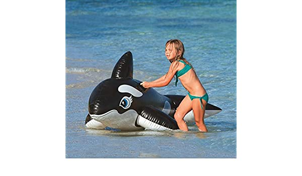 INTEX Orca Hinchable, Vinilo, Negro y Blanco 193x119 cm.: Amazon.es: Hogar