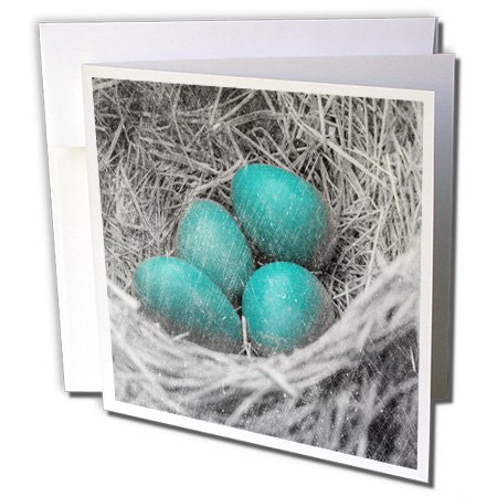3dRose Robin Eggs Grunge by Angelandspot - Greeting Cards, 6 x 6 inches, set of 12 (gc_130435_2)