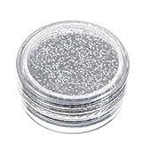 Sparkly Makeup Glitter Loose Powder EyeShadow Silver Eye Shadow Pigment