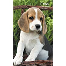 2018 Puppies 2-Year Pocket Planner / Calendar (Mead): Design Will Vary