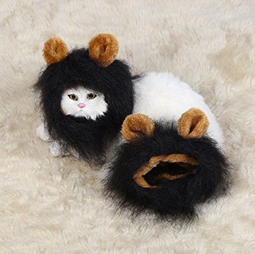 (Sporer@ Pet Costumes Lion Mane Wig Cat Costume and Small cat and dog Costume with Complimentary Feathered Catnip Toy Headwear Hat with Ears for Halloween&Christmas(Black)