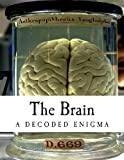The Brain, Dorin Teodor Moisa, 1490935045