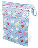 BB Well Wet Bag -2 zippered pockets for wet and dry use-multipurpose from cloth diapers and wipes to swimsuits-this hanging wet bag is for the baby-toddler-kids and adults (blue and toys)
