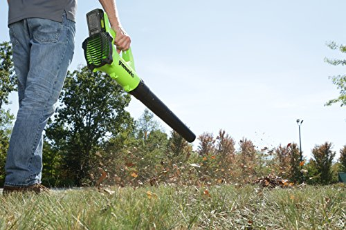 Buy battery operated leaf blowers