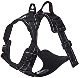 Chai's Choice Best Outdoor Adventure Dog Harness (Medium, Black)