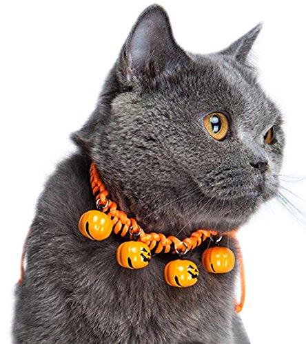 Halloween Cat Collar with Pumpkin Bells by (Halloween Cat Collar)
