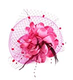 Urban CoCo Women's Bow Feather Net and Veil Fascinator Cocktail Party Hair Clip Hat (#1 Rose)