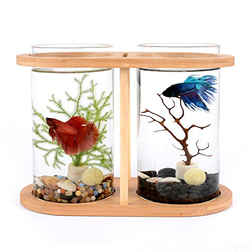 Segarty Cool Design Desktop Glass Fish Tank | Small Fish Bowls with Dual Glass Vase and Bamboo Shelf | 360 Degree View Fish Aquarium Kit For Betta Fish | Livingroom Home Office - Blessings Bowl Glass