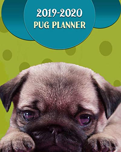 2019 - 2020 Pug Planner: Daily, Weekly and Monthly Planner | 2019 - 2020 Two Year Planner | 24 Month Calendar | January 2019 through December 2020 | 8