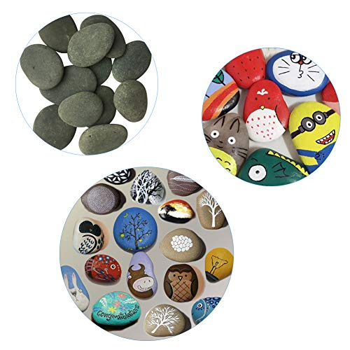 Lifetop 6pcs Large Painting Rocks DIY Rocks for Painting Kindness Rocks Smooth Surface Stones,Arts and Crafts ,2.3 to 3.2 inches ,Hand Picked for Painting Rocks