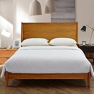 100% Pure Long Grade Mulberry Silk Comforter Silk filled Comforter Silk Quilt Silk Duvet (Queen, Summer) (86 X 88 Inches / 220 X 225 Cm) SFDWH220x225-1