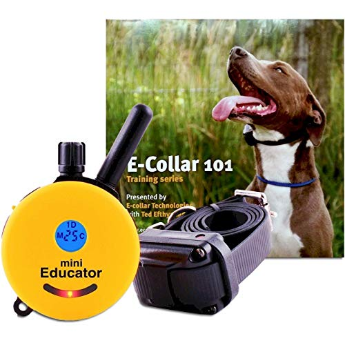 Educator ET-300-TV Bundle: Mini 1/2 Mile E-Collar Remote Dog Training Collar Plus 101 Off-Leash 4 Sessions Dog Training DVD, Yellow (Collar Electronic Training Dvd)