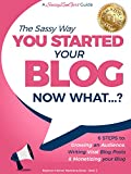 You Started a Blog - Now What....?: 6 Steps to Growing an Audience, Writing Viral Blog Posts & Monetizing your Blog (Beginner Internet Marketing Series Book 3)