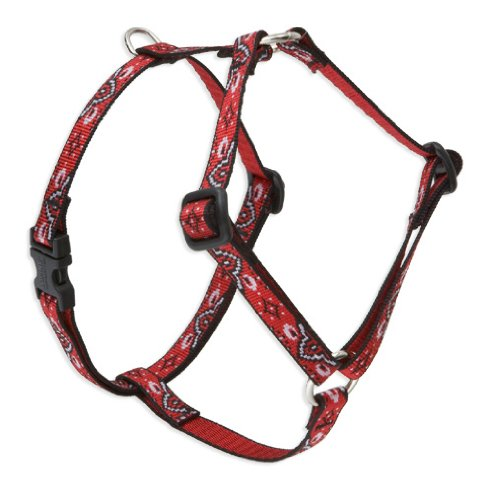 "LupinePet 1/2"" Wild West 12-20 Roman Dog Harness"