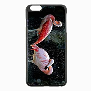 iPhone 6 Plus Black Hardshell Case 5.5inch - flamingos birds water drops Desin Images Protector Back Cover