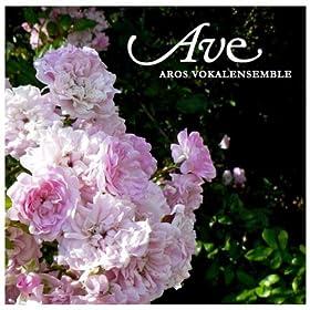 Amazon.com: Veni sancte spiritus: Aros Vokalensemble: MP3
