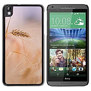New Beautiful Custom Designed Cover Case For HTC Desire 816 With Wheat In Field Phone Case