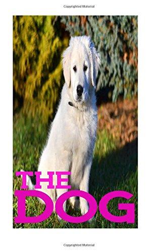 The Dog: Password Book Internet Password Organizer , Password Journal Pocket Size (Volume 16) pdf epub