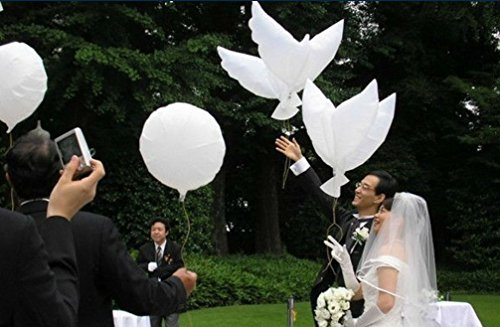 king's store,Dove Balloons Wedding, Party, Outdoor Games Birthday and More.The Best Choice 5 pcs The Balloon