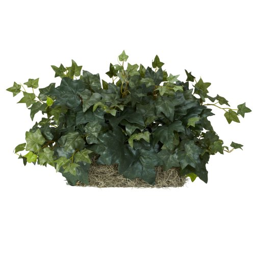 (Nearly Natural 6707 Ivy Ledge Set on Foam Decorative Silk Plant, Green)