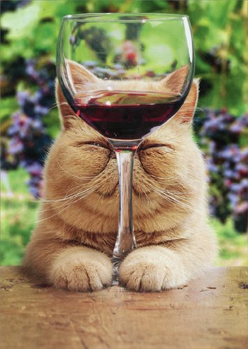 (Cat With Glass Of Red Wine - Avanti Funny Birthday Card)