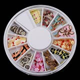 10sets/lot,120 Pcs Multicolor Snack Fimo Nail Art Nail Tips Slice Decoration Wheel