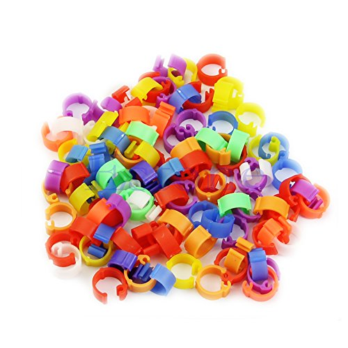 Poity Chicken Hen Pigeon Leg Poultry Dove Bird Duck Chicks Parrot Clip Rings Band Color Random 100 Pieces