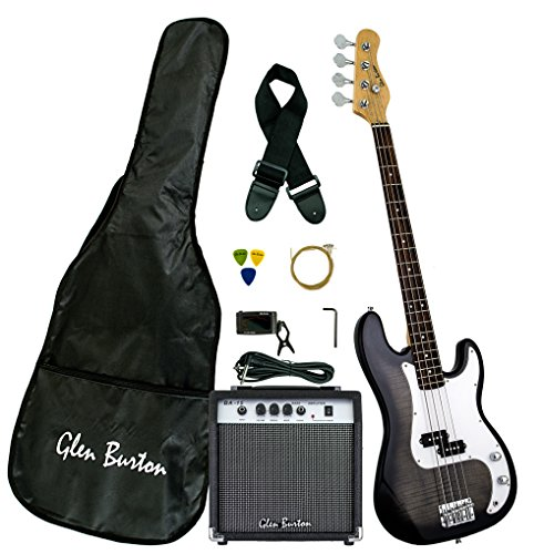 gibson bass package - 1