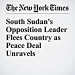 South Sudan's Opposition Leader Flees Country as Peace Deal Unravels | Jacey Fortin