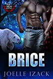 BRICE (Fate-Match: Whispcreek Book 1)