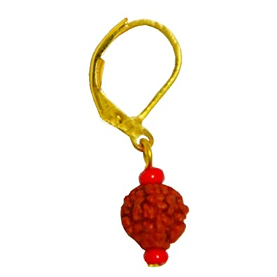 Sullery Big Bali Rudraksha Gold Wood Oval Hoop Earring For Men And