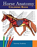 Horse Anatomy Coloring Book: Incredibly Detailed