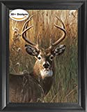 Deer Portrait Framed 3D Lenticular Picture - Unbelievable Life Like 3D Art Pictures, Lenticular Posters, Cool Art Deco, Unique Wall Art Decor, With Dozens to Choose From!