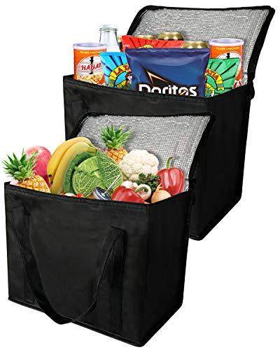 2 Insulated Reusable Grocery