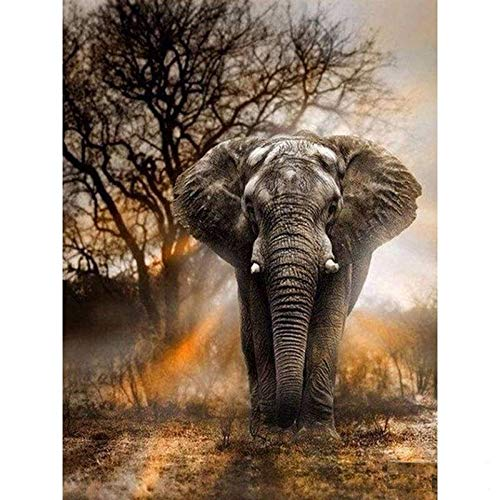 5D Artist Painting Kit - DIY Cross Stitch Kit (Size: 12x16 in) Great Designs, Diamond Embroidery Kit for Art & Craft, Living Room Wall Decor, Home Decor (Wisest Elephant)