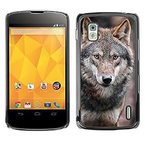 Qstar Arte & diseño plástico duro Fundas Cover Cubre Hard Case Cover para LG Google NEXUS 4 / Mako / E960 ( Wolf Wild Dog Brown Forest Fairytale Eyes)