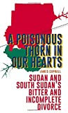 A Poisonous Thorn in Our Hearts: Sudan and South