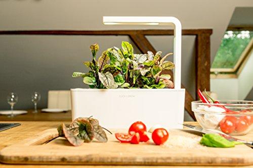 51L S0OsczL - Click & Grow Indoor Smart Herb Garden