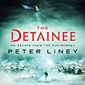 The Detainee Audiobook by Peter Liney Narrated by Jeff Harding